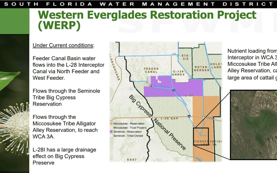 Project Highlight: C-139 Annex: Western Everglades Restoration Project